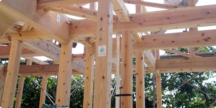 建築用木材